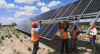 LONGi Strengthens Presence in Mexico With 191MW Pachamama PV Power Plant