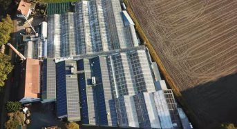Q QCELLS Modules Supply Clean Electricity for Award-Winning Crop Production System at Bock Bio Science Gmbh