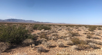 BLM and DOI Issue Final Record of Decision for Milestone 690MW Gemini Solar and Battery Storage in Nevada