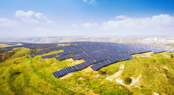 """LONGi Supplies 228 MW of High-Efficiency PERC Modules for """"Agriculture-Solar Complementary"""" Project in Ningxia"""