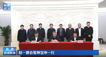 LONGi Plans to Invest Another 8 Billion Yuan to Build a 15GW Solar Cell Project